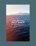 Englisch, Bibel KJV, Outreach Bible