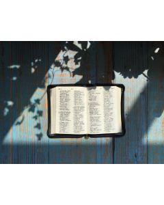 Bibel - Chinesisch