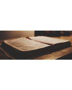 Biblia - Polnisch